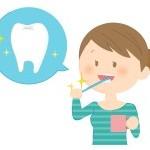 歯磨きの回数は多い方が良い?大切なのは量より質!