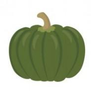 かぼちゃの皮の栄養!じつは実よりもすごいって知ってた?!