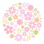 母の日の花ギフト!一風変わったおすすめを紹介♪